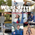 What Drives an Expat?
